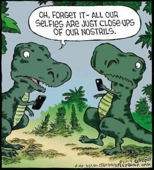 Omg! Selfies humor! Lol
