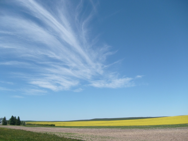 Big sky country - welcome to North Dakota~