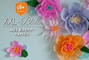 Tolle DIY-XXL-Blüten aus Krepppapier selber machen. Die Blüten eignen sich wunderbar als Wanddeko, für Hochzeitsdekos und als Fotohintergründe. Das Tutorial findet Ihr hier: www.deko-kitchen.de