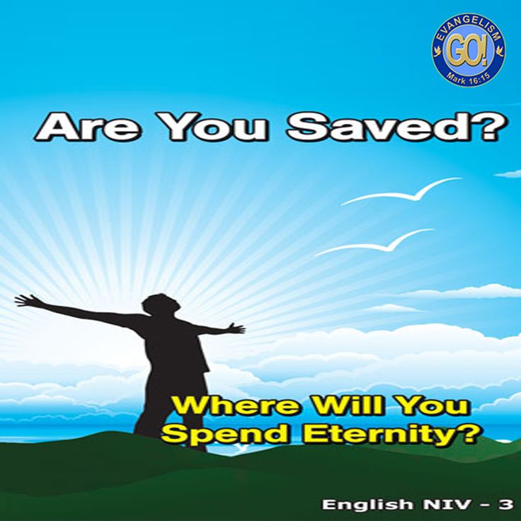 English NIV GO! Gospel Bible Tracts - 4 Covers, 12 Pages  Are you saved?