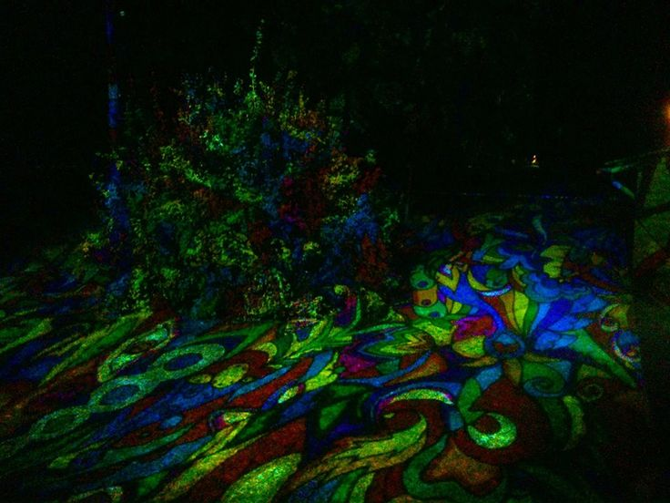 Fák, bokrok - fényfürdő  Normafa Open Air - GOA vs DNB Night Projection fényfestés  További fotók: https://www.facebook.com/media/set/?set=a.644361695575512.1073741834.216863264992026&type=3  #NormafaOpenAir #goa #dnb #fényfestés #NightProjection #raypainting #visuals