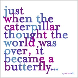 metamorphisis: Remember This, Life, Caterpillar Thoughts, Butterflies, Beautiful, Favorite Quotes, Tattoo, Living, Inspiration Quotes