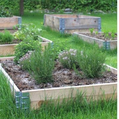 Vår sjefredaktør Grete Sivertsen har anlagt kjøkkenhage på aller enkleste vis. Se hennes fristende hage!