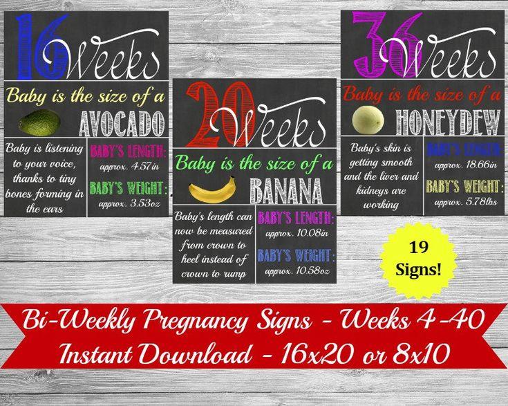 Bi-Weekly Pregnancy Chalkboard, Maternity Photo Prop, Baby Bump Sign, Weekly Baby Countdown, Bi-Weekly Pregnancy Countdown, Week By Week by PrintsInspiredByMyah on Etsy