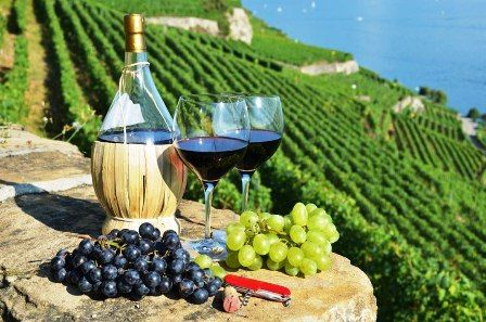 Вина в Тоскане