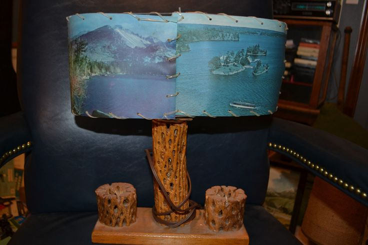 Vintage Mid-Century Southwestern Table Lamp Cholla Cactus Base Photo Scene Shade