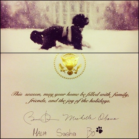Los Angeles. My film maker neighbour, Mark helped out with Obama's recent campaign and got this Christmas card from the family. So sweet!