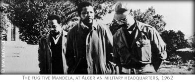 Viewers' & Teachers' Guide for The Long Walk of Nelson Mandela documentary from PBS.