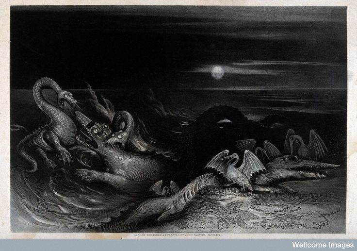 A nocturnal scene with saurians and sea-creatures fighting e