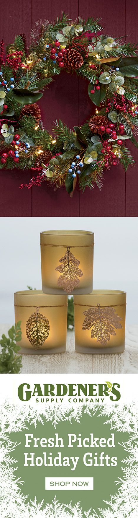 Make your holidays bright, inside and out. Shop fresh picked gifts for the home and for gardeners!