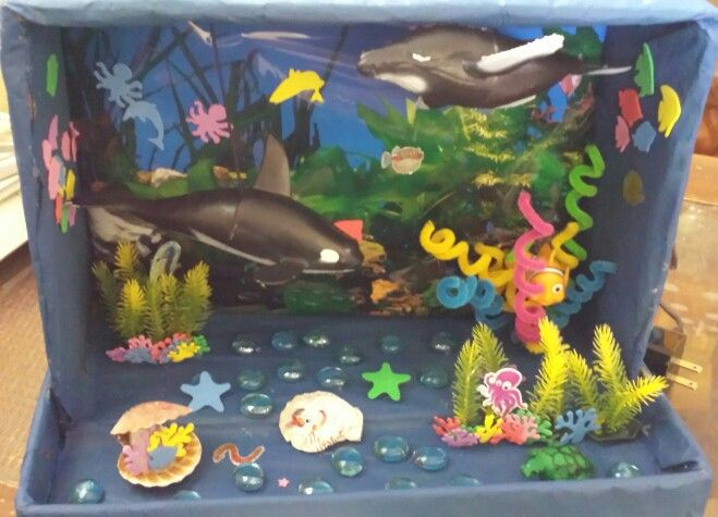 top ocean habitat diorama - photo #8