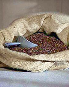 DIY Buckwheat Hull Pillow: I can't tell you how much better I have slept since I made one of these for myself.