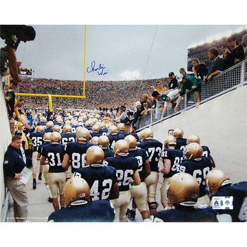Charlie Weis Watching Team Walk out of Tunnel 16x20