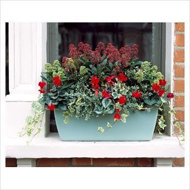 25+ best Winter window boxes ideas on Pinterest ...