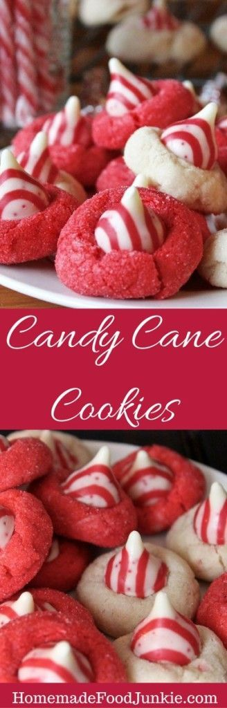 Candy Cane Cookies - delicious little cookie bites have hints of peppermint and white chocolate throughout every mouthful.