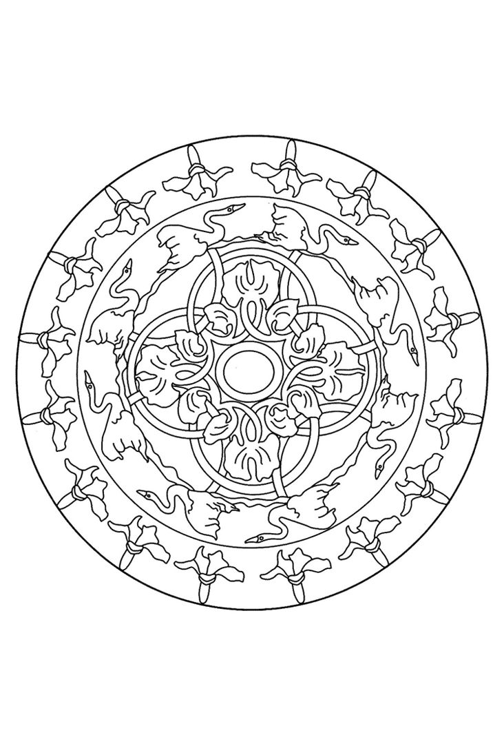 Zwanenmeer Mandala