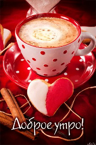 Доброе утро !…