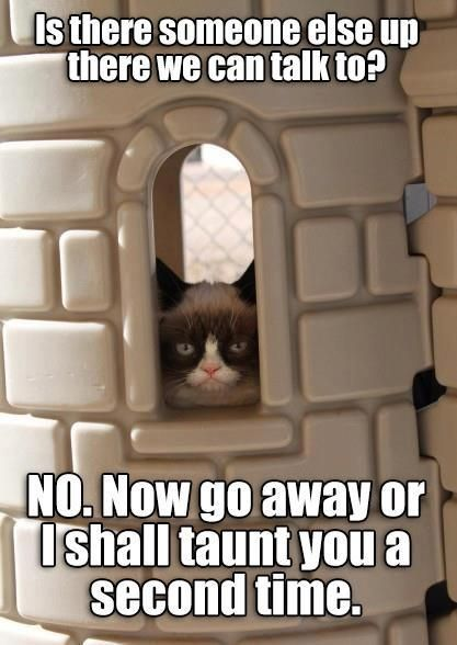 YES!!  Grumpy Cat meets Monty Python!  This just made my week!