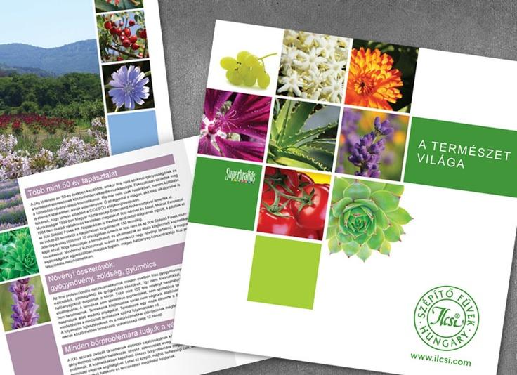 Product catalog for Ilcsi cosmetics.