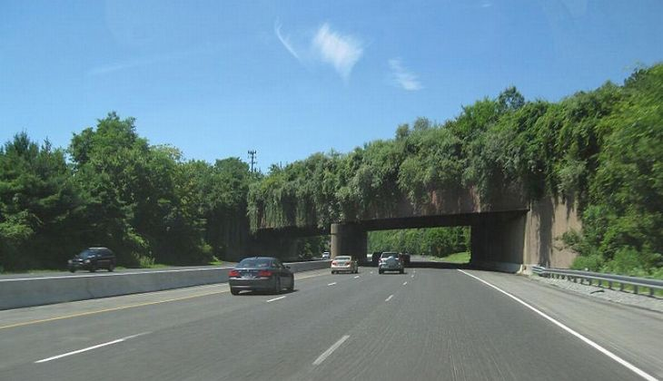 20 Ingeniosos Puentes Para Animales. | Naturaleza - Todo-Mail.  Carretera Interestatal 78, situada en New Jersey, EEUU, atraviesa la reserva Watchung.