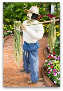 37 best images about garden scarecrow ideas diy on for Fun vegetable garden ideas