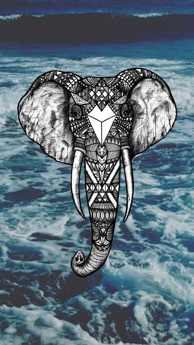 IPhone Elephant Wallpapers HD Desktop Backgrounds x
