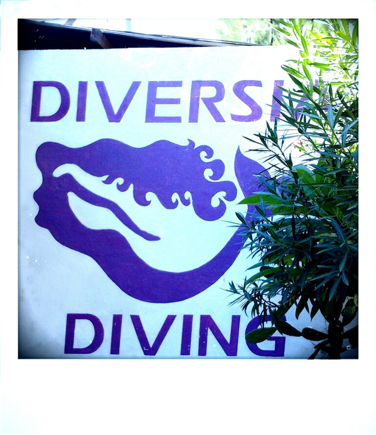 Logo wall-Diversia Diving Gili Trawangan Lombok Indonesia