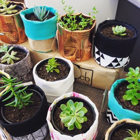 Stocked up with our @misspotspouches in our Kilsyth store #plantpouches #fabricpouches #succulents #gifts #dcbdesigns #kilsyth