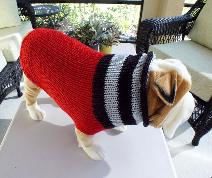 Knitting Patterns For Bulldog Sweaters : 17 Best images about Hand Knit Pet Sweaters on Pinterest Sweater sale, Cabl...