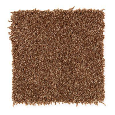 1000 Ideas About Mohawk Carpet On Pinterest Shaw Carpet