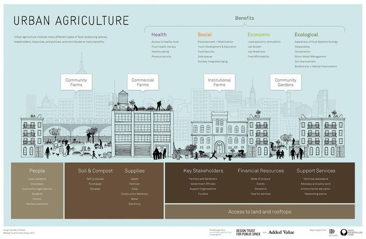 "AgriCultures Network su Twitter: ""#Infographic: Demonstrating the Benefits of Urban Agriculture http://t.co/IupH3YWjSO"""