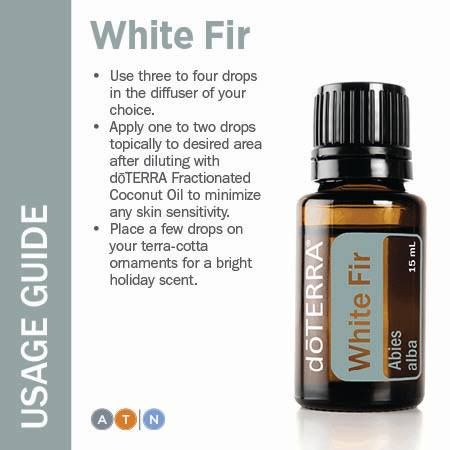 The White Fir tree is a popular wood for construction because of its combination of strength, versatility, and beauty. Its aroma can be described as clean, crisp, woody, and powdery.