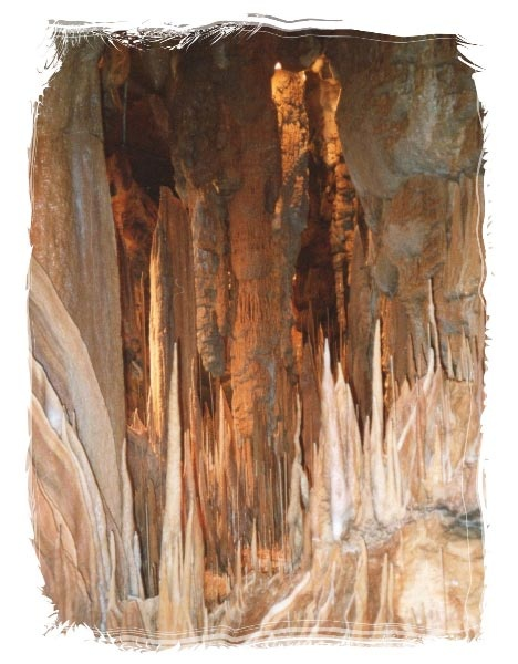 King Solomons Cave (Mole Creek Caves) Tasmania  by Roger Findlay
