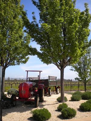 Michael Mondavi Family WineryNapasonoma Wineries, Michael Mondavi, Favorite Places, Favorite Napa Sonoma, Estate Wineries, Families Estate, Mondavi Families, Families Wineries, Napa Sonoma Wineries