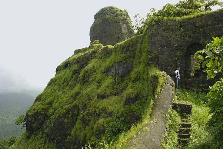 Phansad Wildlife Sanctuary Trek >>>  Phansad sanctuary wildlife is a unique type of reserve in Maharashtra. It is located on the way to Murud from Roha between Kashid village sea coast and Kundalika River.  #treks   #trekking  #Wildlife #SanctuaryTrek #Maharashtra