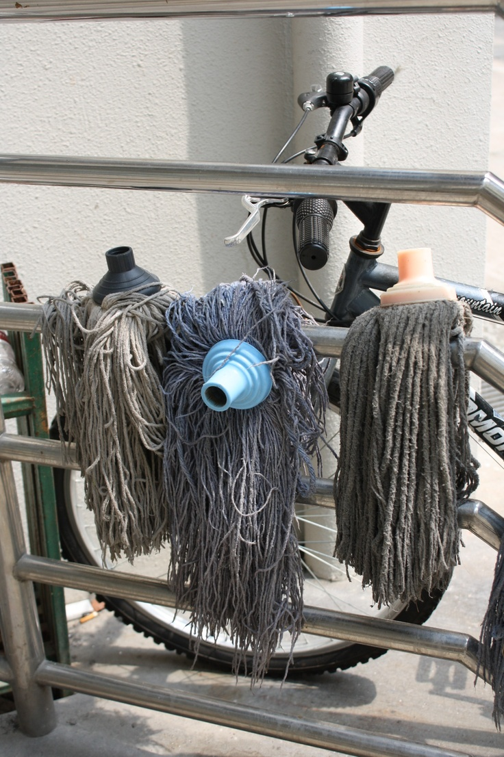 """assignment 2: go to ugly back alley again, find a subject and shoot 20 photos of it.     series title: """"Mop's Day Out"""""""