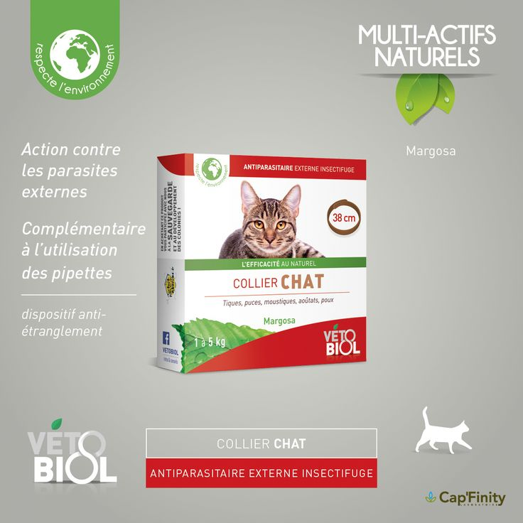 VETOBIOL - Collier Antiparasitaire Chat #vetobiol #NaturelEtEfficace #chat #chien #Soins #ActifsNaturels #SansPesticides #Antiparasitaire