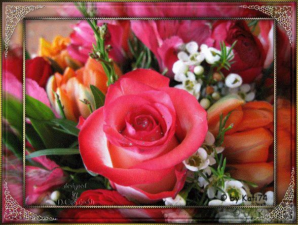 """""""Ruža, hoci by sa inak volala, voňala by stále rovnako"""", napísal kedysi dávno Wiliam Shakespeare."""