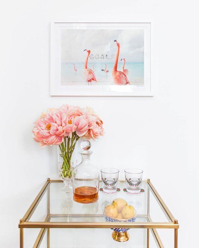 Campari Flamingo Cocktail Recipe — Dishmaps