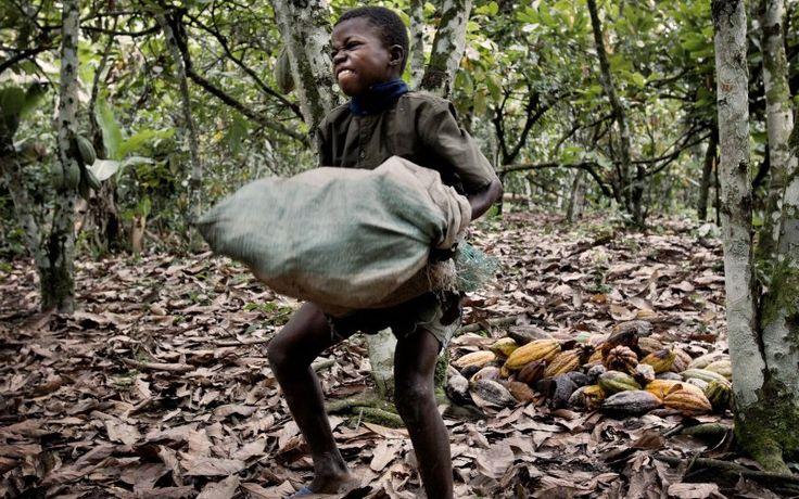Descubra as 7 marcas de chocolate que utilizam trabalho escravo infantil