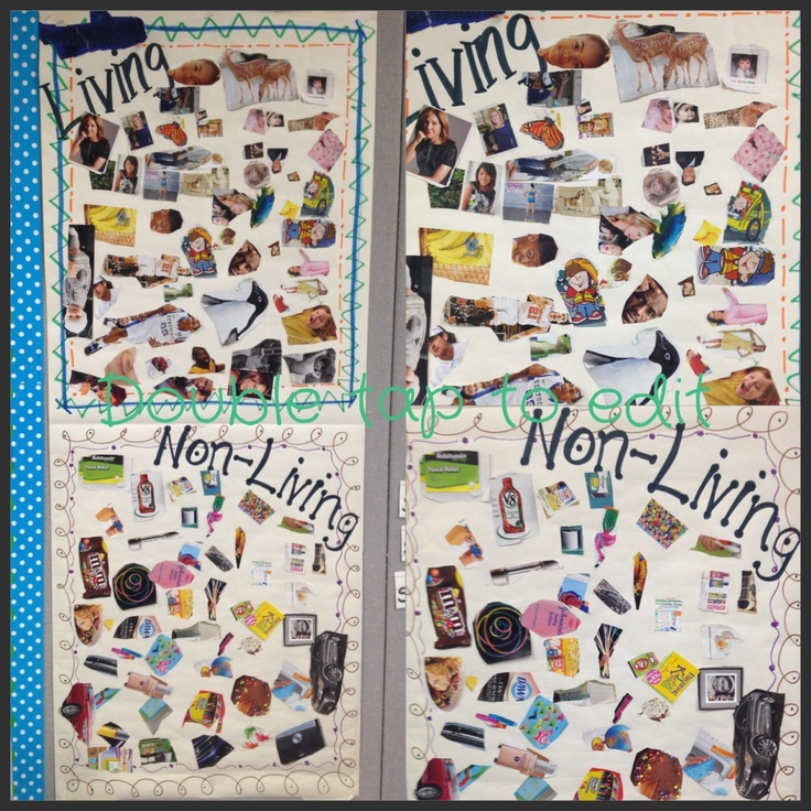 This is a great independent activity to use during a living systems unit; have students search through old magazines for examples of living & non-living things to create a collage.