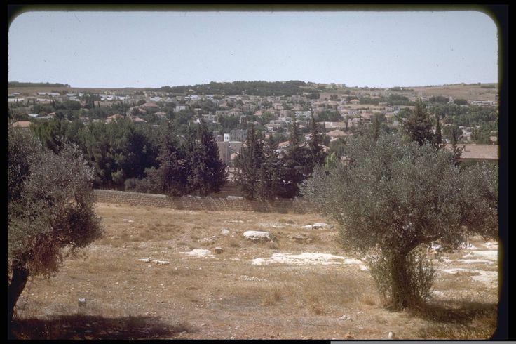 The Katamon neighbourhood in Jerusalem, July 1950. Katcoff collection. אזור בית הנסן