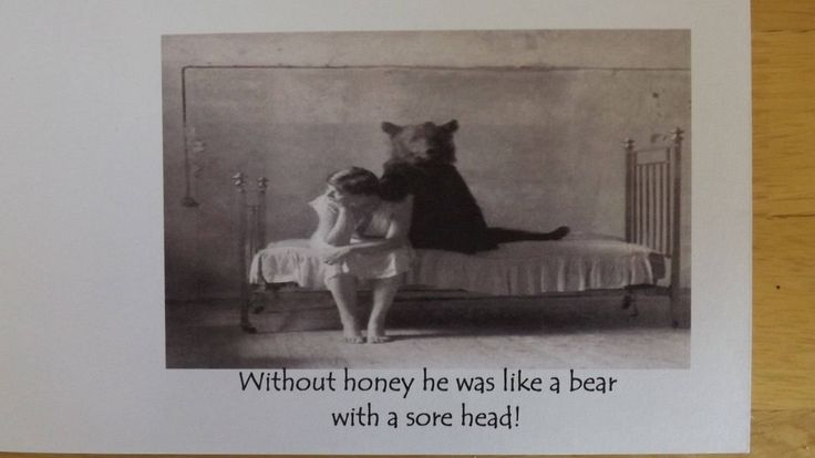 Without honey he was like a bear with a sore head! Blank Greetings Card. by HeronCottageArtisan on Etsy