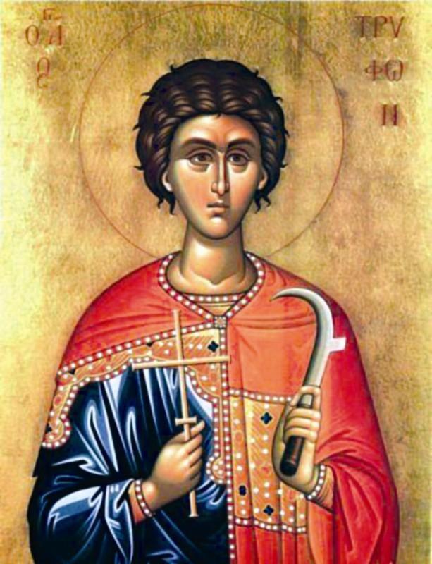 Sfântul Mucenic Trifon