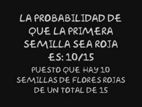 Ejercicio probabilidad condicional - YouTube