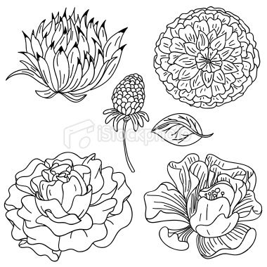 It would be interesting to incorporate a flower into a pattern or use certain elements, such as petals or stems.