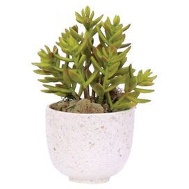 """Complement a Southwestern vignette or craft an indoor rock garden with this lifelike faux succulent, nestled in a round white planter.  Product: Faux botanical arrangementConstruction Material: Plastic and terrazzoColor: Green and whiteFeatures:  Includes a faux succulentRound planterDimensions: 9"""" H x 6"""" Diameter"""