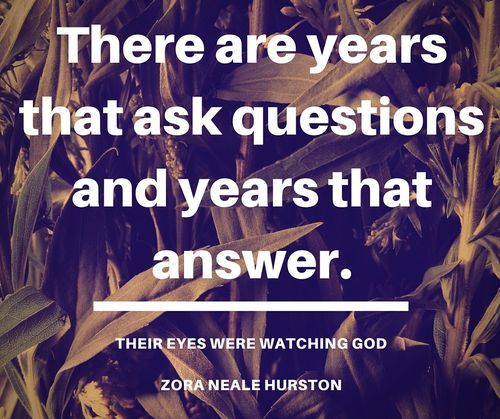 the metaphor of zora neale hurston in the novel their eyes were watching god America's best-loved novel may end up being the work of a proud black woman from eatonville to make that happen, zora neale hurston needs your vote hurston's most famous work, their eyes.