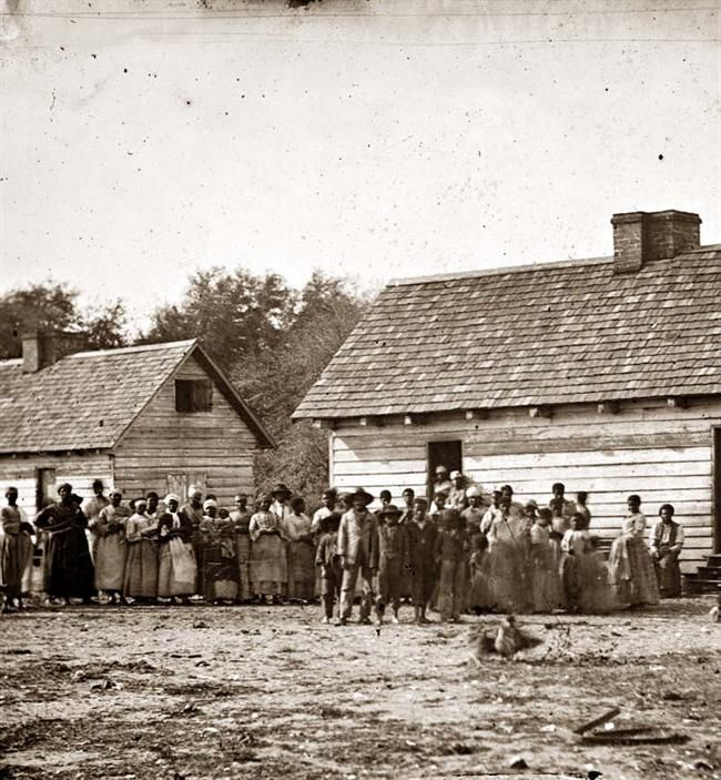 a history of black majority in southern carolina Religion and the us south  the first black congregation in the southern colonies,  a professor of history and southern studies, he earned his ba and ma at the .