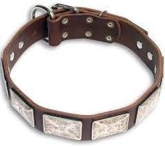 Best Dog shock training collar